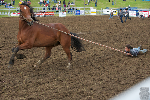 Team bronc riding - 2011 Marysville Stampede