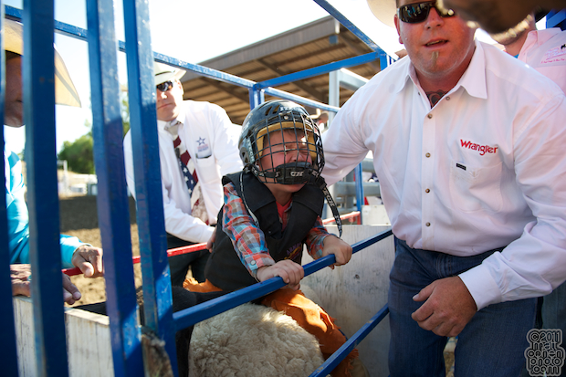 Mutton bustin' - 2011 Marysville Stampede