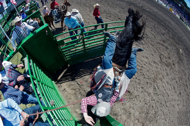 Teddy Athan & Witch Doctor- 2011 Livermore Rodeo