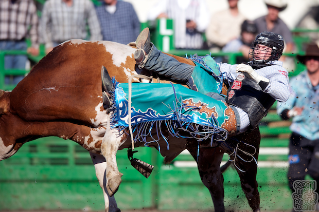 Colin McTaggart & Let 'er Rip - 2011 Livermore Rodeo