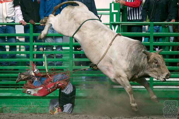 Derek Lacasa & No Guts - 2011 Livermore Rodeo