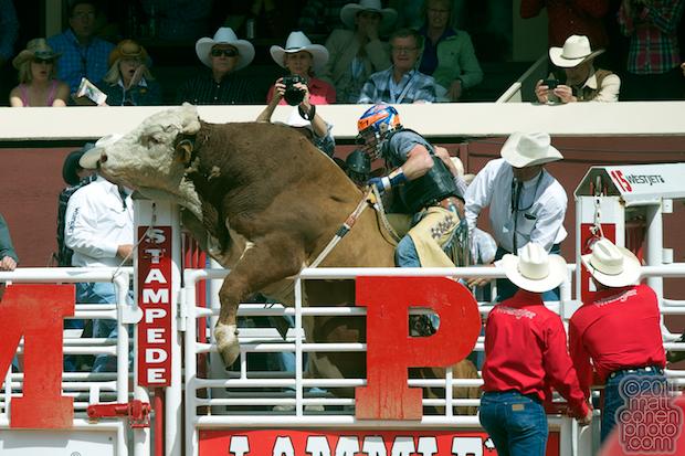 Austin Meier - 2011 Calgary Stampede