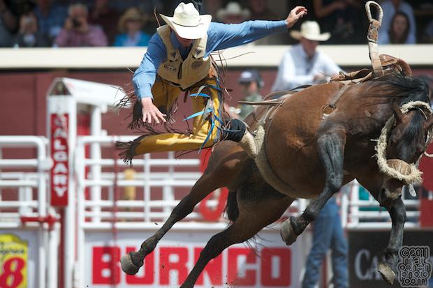 Cody Taton - 2011 Calgary Stampede