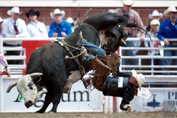 Jesse Torkelson - 2011 Calgary Stampede
