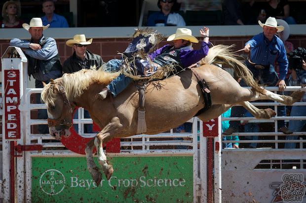 Tilden Hooper - 2011 Calgary Stampede