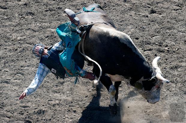Nicholas Sartor - 2011 California Rodeo Salinas