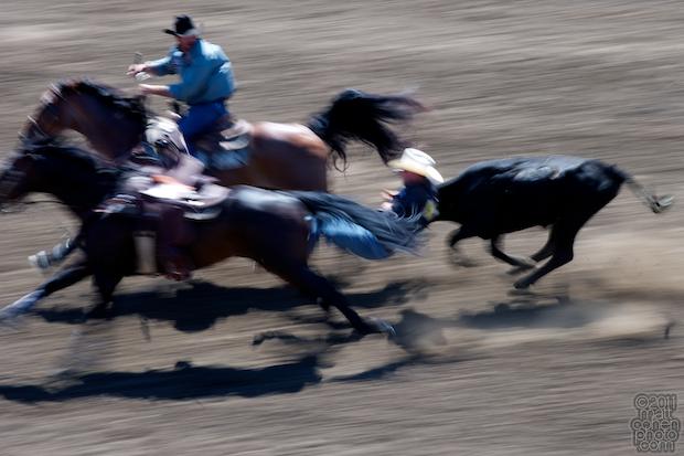Levi Rosser - 2011 California Rodeo Salinas