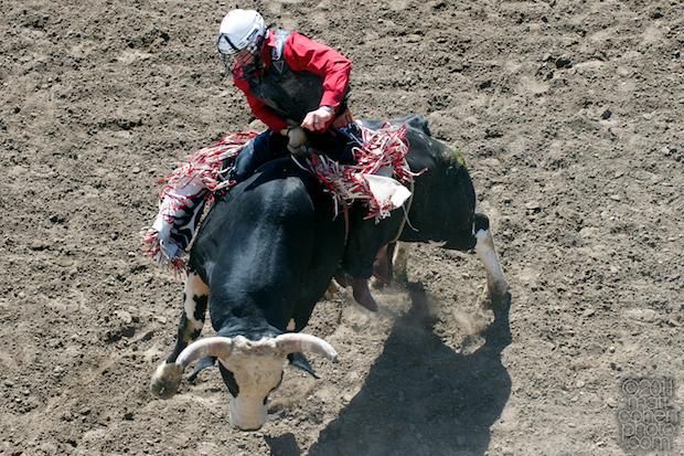 Shane Proctor - 2011 California Rodeo Salinas
