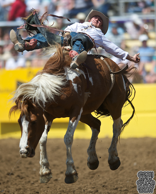 Will Lowe - 2009 Red Bluff Round-Up