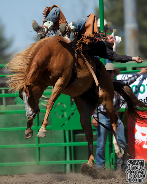 Steven Dent - 2011 Livermore Rodeo