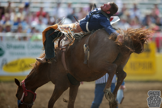 Casey Colletti - 2011 Red Bluff Round-Up