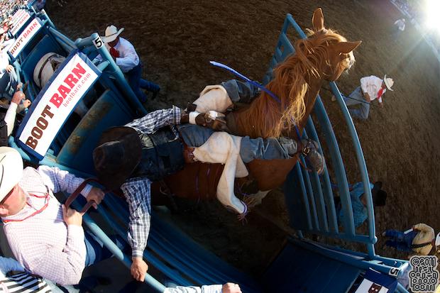 Cody DeMers - 2011 Reno Rodeo