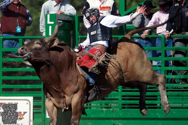 LJ Jenkins - 2011 Livermore Rodeo
