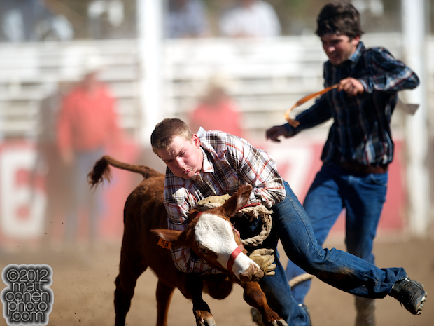 2012 Mother Lode Round-Up - Calf Scramble