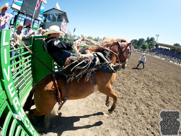Bradley Harter - 2012 Livermore Rodeo