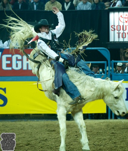2012 National Finals Rodeo - Bareback Stock - Classic Equine Rose Puff of Cervi Championship Rodeo