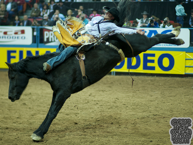 2012 National Finals Rodeo - Bareback Stock - Black Cat of Beutler & Son Rodeo