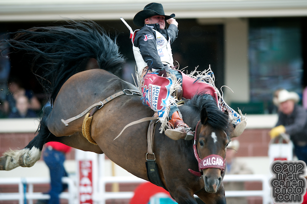 2012 National Finals Rodeo - Bareback Stock - Princess Warrior of Calgary Stampede
