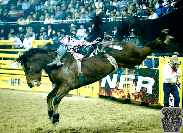 2012 National Finals Rodeo - Bareback Stock - Dirty Jacket of Carr Pro Rodeo