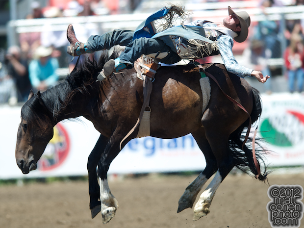 2012 National Finals Rodeo - Bareback Stock - Danged If You Do of Corey & Lange Rodeo.