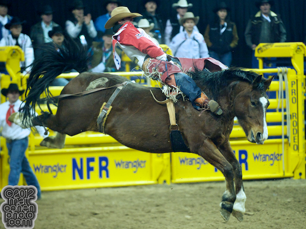2012 National Finals Rodeo - Bareback Stock - Molly of JK Rodeo Company