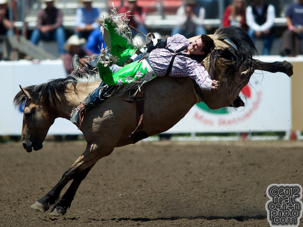 2012 National Finals Rodeo - Bareback Stock - Assault of Rafter G Rodeo.
