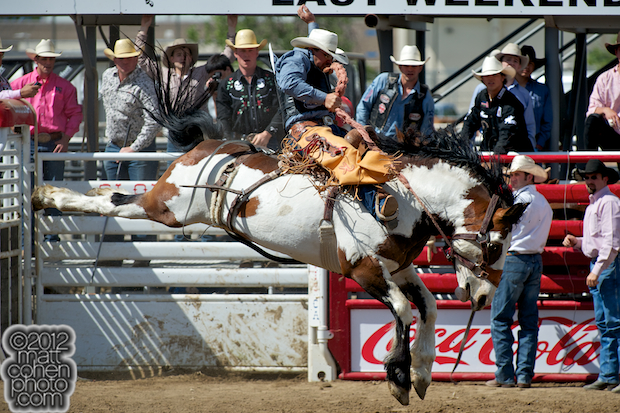 2012 National Finals Rodeo- Saddle Bronc Stock - Lunatic Fringe of Burch Rodeo Co