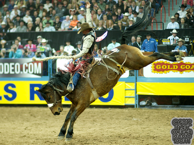 2012 National Finals Rodeo - Saddle Bronc Stock - Eight Ball of Bar T Rodeo