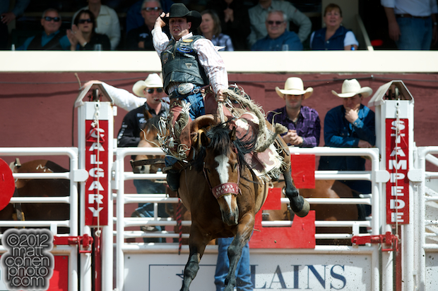 2012 National Finals Rodeo- Saddle Bronc Stock - Gross Beetle of Calgary Stampede