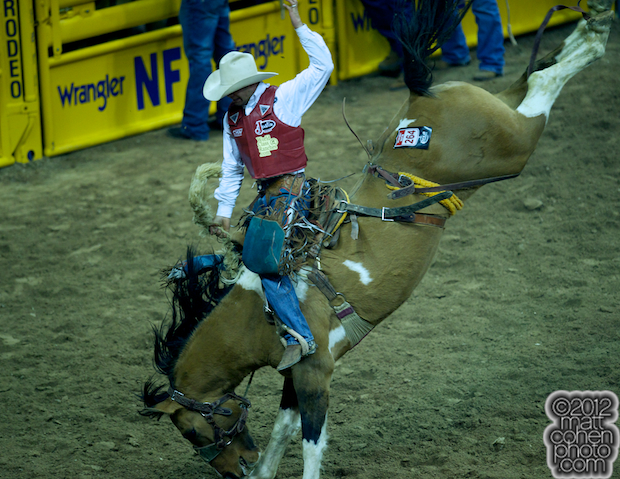 2012 National Finals Rodeo- Saddle Bronc Stock - Fraid Knot of Korkow Rodeos