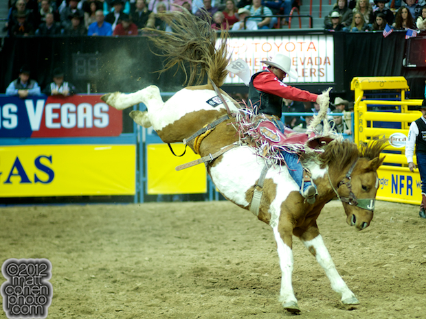 2012 National Finals Rodeo- Saddle Bronc Stock - Vanilla Twist of Korkow Rodeos