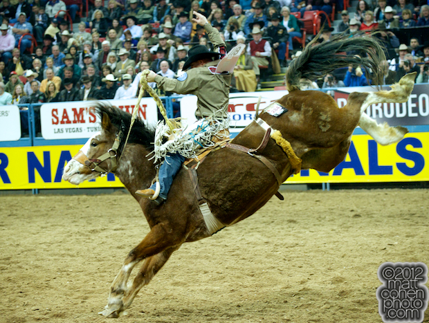 2012 National Finals Rodeo- Saddle Bronc Stock - Smoke Ring of Southwick's Rocky Mountain