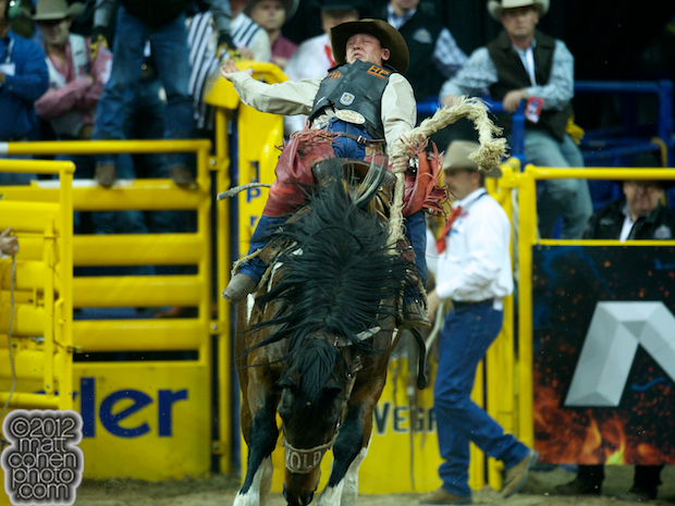 2012 National Finals Rodeo- Saddle Bronc Stock - Awesome of Wayne Vold Rodeo Co