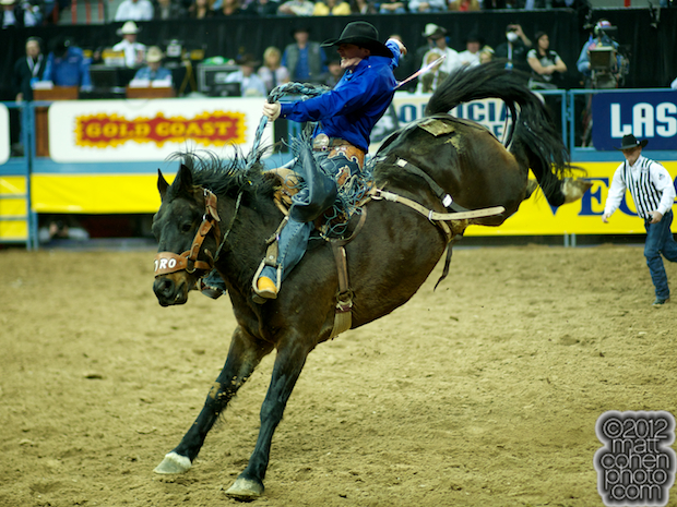 2012 National Finals Rodeo- Saddle Bronc Stock - Pedro of Wayne Vold Rodeo Co