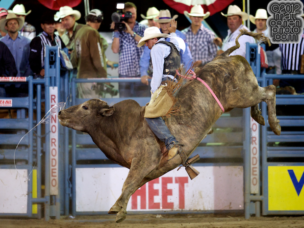 2012 National Finals Rodeo- Bull Riding Stock - Curveball of Flying U Rodeo