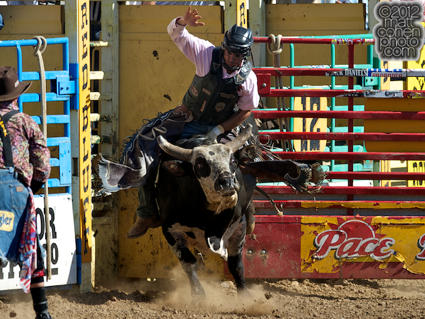 2012 National Finals Rodeo- Bull Riding Stock - Cash Money of Growney Brothers Rodeo Co