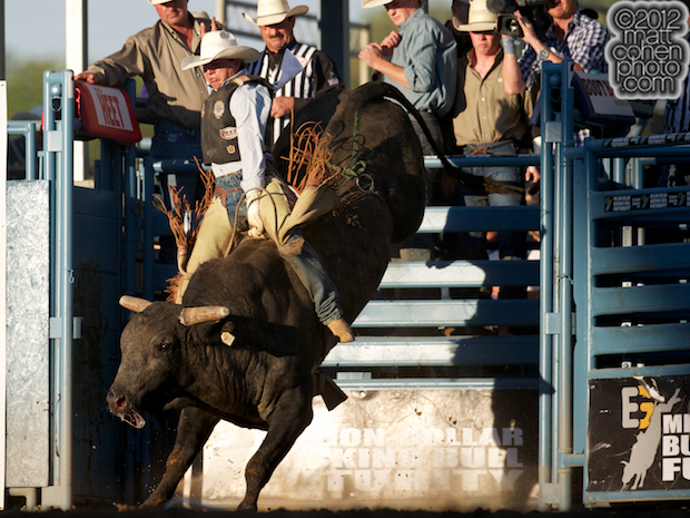 2012 National Finals Rodeo- Bull Riding Stock - Canadian Tuxedo of Growney Brothers Rodeo Co