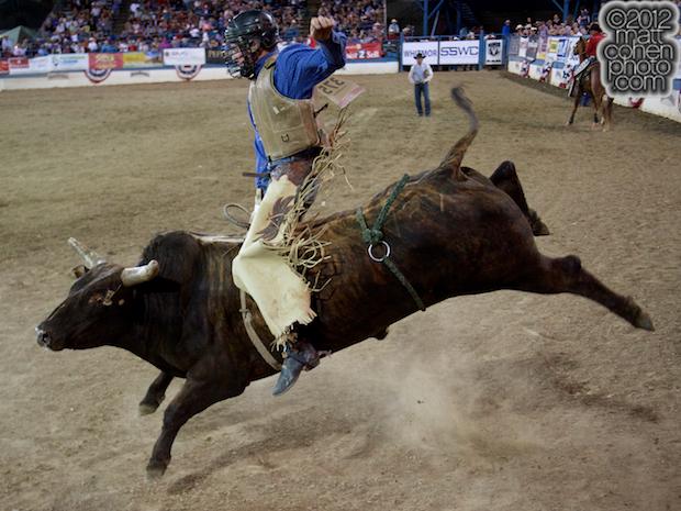 2012 Wnfr Wrangler National Finals Rodeo Bucking Stock