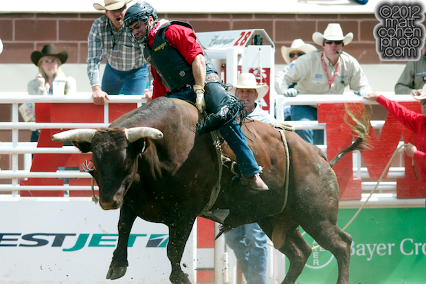 2012 National Finals Rodeo- Bull Riding Stock - Whiskey Jack of Kesler Rodeo