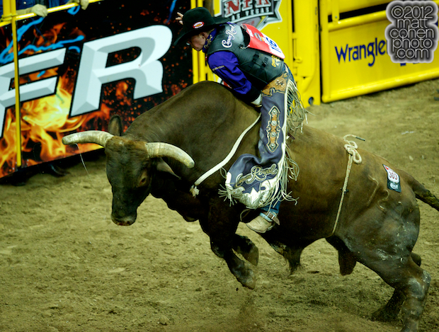 2012 National Finals Rodeo- Bull Riding Stock - Jaw Bender of Andrews Rodeo