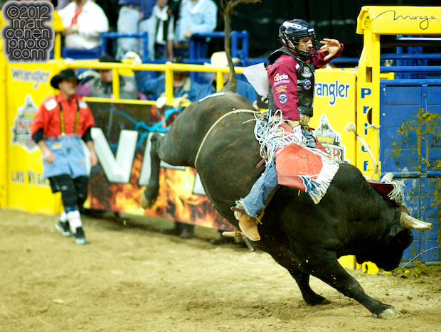 2012 National Finals Rodeo- Bull Riding Stock - Western Hauler's Deal or No Deal of Rafter G Rodeo
