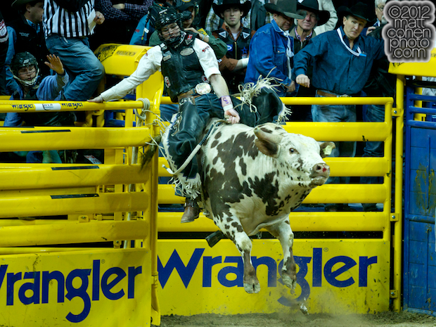 2012 National Finals Rodeo- Bull Riding Stock - Rocket Man of Classic Pro Rodeo