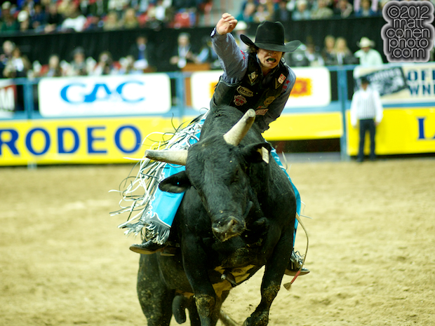 2012 National Finals Rodeo- Bull Riding Stock - Iron Horse of Do or Die Pro Rodeo