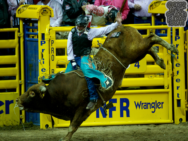 2012 National Finals Rodeo- Bull Riding Stock - Road Hazard of Rafter G Rodeo
