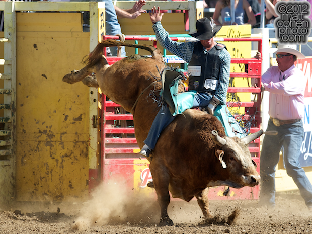 2012 National Finals Rodeo- Bull Riding Stock - Cross Off of Western Rodeos