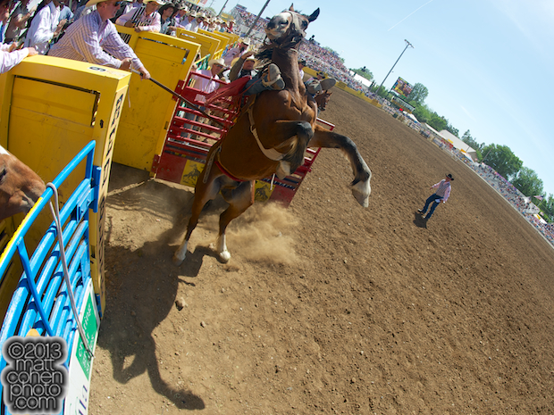 2013 Red Bluff Round-Up - Brady Nicholes