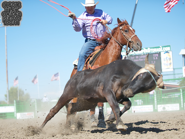Team roper Tyler Helton of Bakersfield, CA competes at the Livermore Rodeo in Livermore, CA.