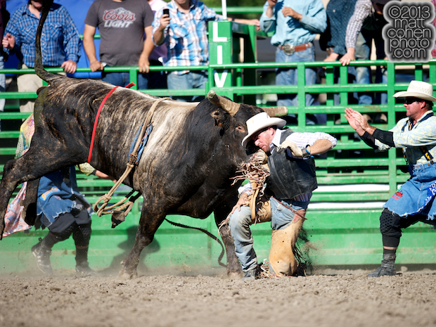 Bull rider Joseph Chamberlain of Newman, CA gets bucked off Mad Scientist at the Livermore Rodeo in Livermore, CA.