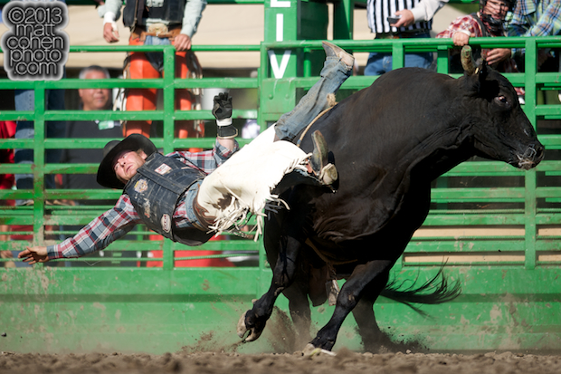 Bull rider Carter Downing of Woodruff, UT gets bucked off Crystal Clear at the Livermore Rodeo in Livermore, CA.