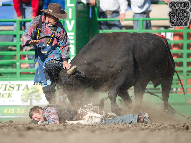 Bullfighter Eric Layton of Red Bluff, CA takes a shot from Crystal Clear at the Livermore Rodeo in Livermore, CA.